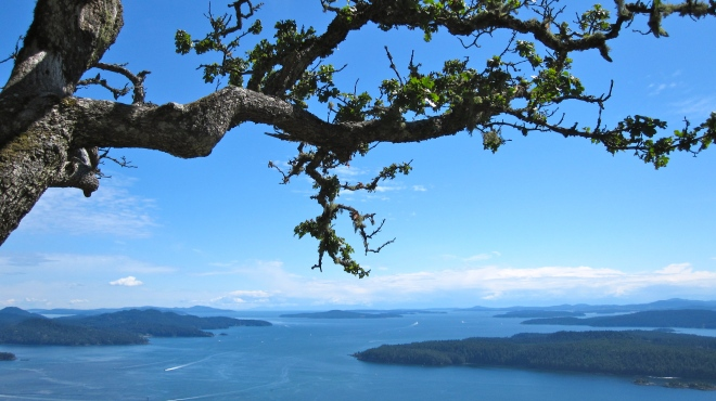 Top of Mt Galiano - View of Active Pass