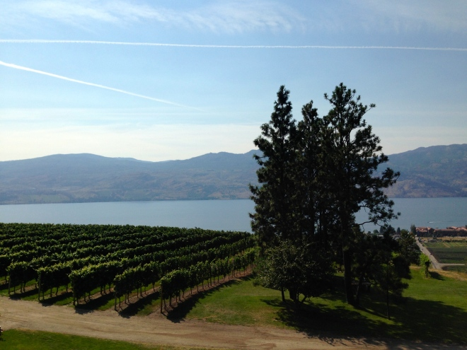 Mission Hill Winery, Lake Okanagan, West Kelowna