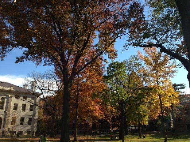 Campus Tour of HarvardUniversity