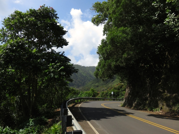 Maui's Famous Road to Hana